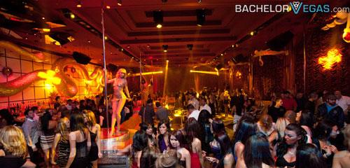 Index Of Nightclubs Jpegs Surrender